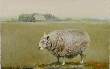 羊の思い・我が記録