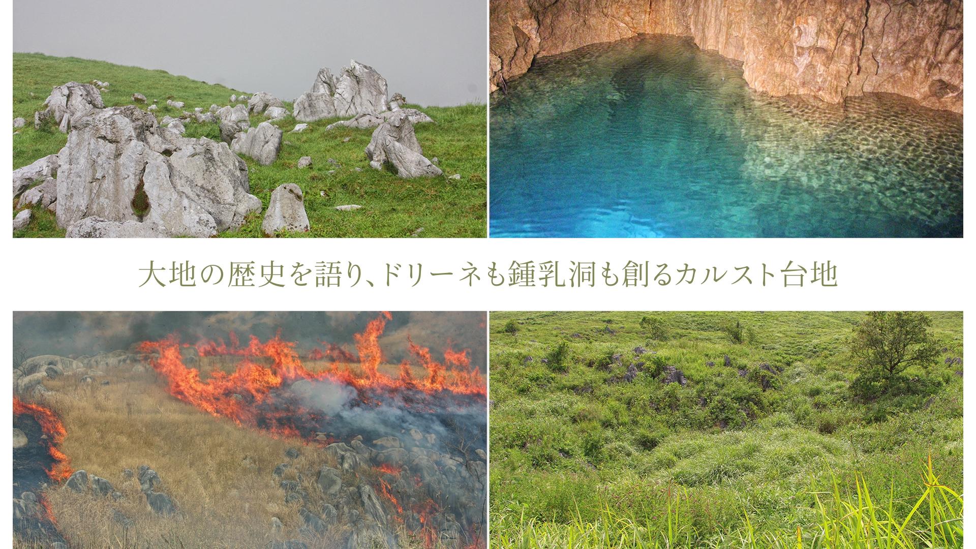 大地の歴史を語り、ドリーネも鍾乳洞も創るカルスト台地