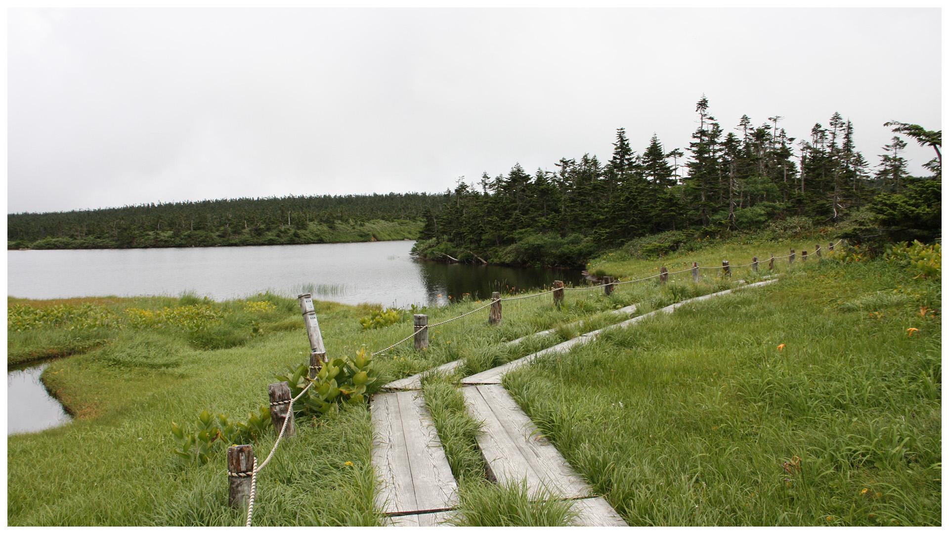 高原の沼と湿原